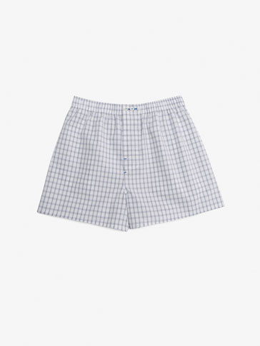 BRIEFS WITH LARGE CHECKS
