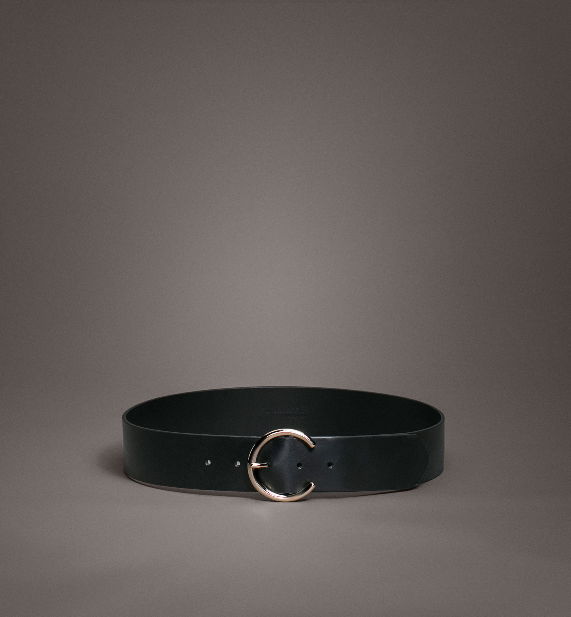 LIMITED EDITION WIDE BELT